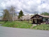 もみの湯の桜が満開