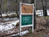 八ヶ岳自然文化園の湿生花園
