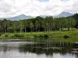 初夏のまるやち湖