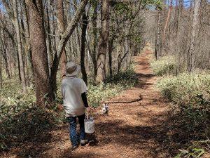 藤尾根の小径を歩く