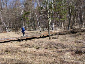 木道をモモと歩く