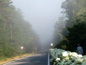 黒ずんだ霧に遭遇